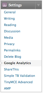 Google Analytics section inside WordPress MU